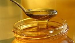 العسل.jpg
